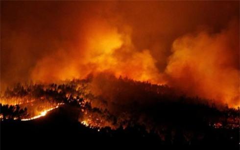 Cháy rừng thiêu chết hàng chục người trong ô tô tại Bồ Đào Nha - Ảnh 1.