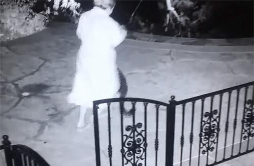 Nửa đêm ra sân nhặt đồ chơi cho chó, người phụ nữ chạy tóe khói vì nắm trúng con rắn đuôi chuông - Ảnh 2.