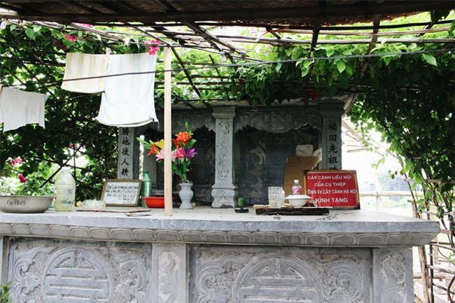 Chuyện tình yêu của cụ ông tự tay trồng và chăm sóc cả một vườn hoa ngát hương bên mộ phần người vợ đã khuất - Ảnh 3.