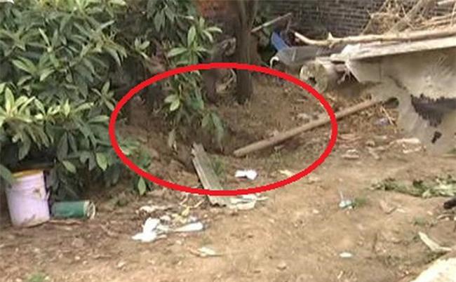 Gã đàn ông giết vợ, chôn xác trong vườn nhà suốt 5 năm mới bị phát hiện - Ảnh 1.