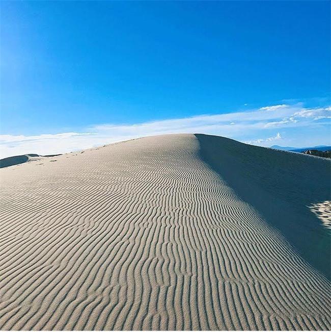 Ngẩn ngơ trước 5 đồi cát đẹp mê hồn ở miền Trung, nhìn thôi đã yêu luôn rồi - Ảnh 40.