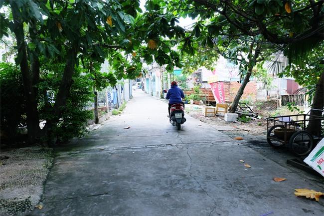 Mẹ bỏ đi, bà nội 60 tuổi làm giúp việc, chạy xe ôm nuôi 3 đứa cháu ở Sài Gòn - Ảnh 5.