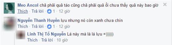 """day la qua oi hay qua tao"" – cau hoi khien cu dan mang viet ""lu lan"" nhat hien nay - 3"