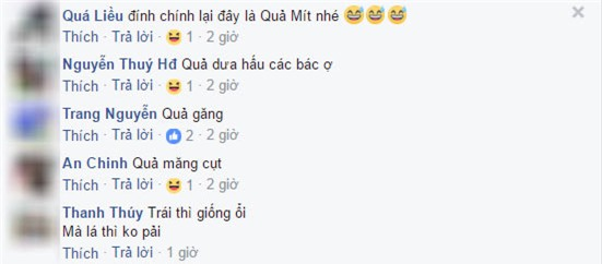 """day la qua oi hay qua tao"" – cau hoi khien cu dan mang viet ""lu lan"" nhat hien nay - 4"