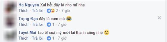 """day la qua oi hay qua tao"" – cau hoi khien cu dan mang viet ""lu lan"" nhat hien nay - 6"