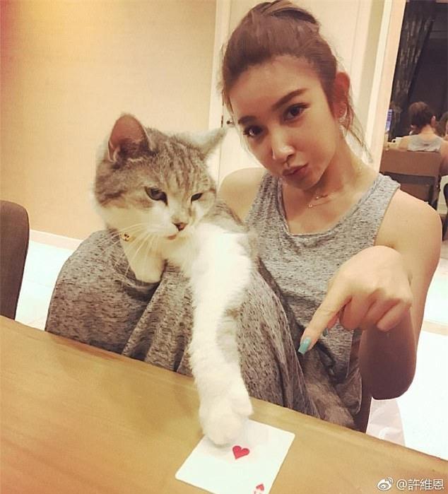 Người em út Sharon Hsu (36 tuổi) vốn là một diễn viên kiêm người mẫu.