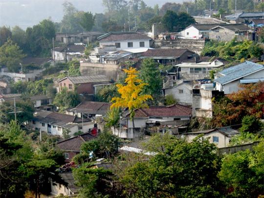 Hàn Quốc: Bố chồng giết chết con dâu người Việt - Ảnh 1.