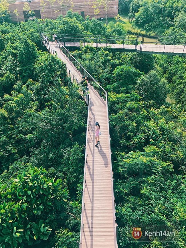 Đến Bangkok, đừng quên ghé khu rừng thần tiên được xây từ... bãi rác của người Thái - Ảnh 4.