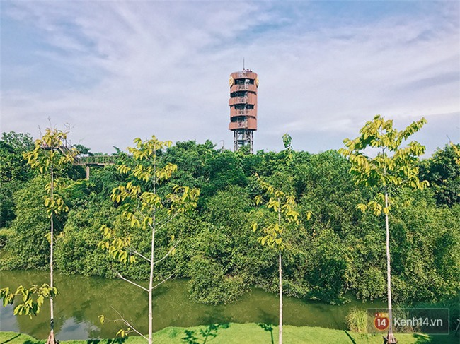 Đến Bangkok, đừng quên ghé khu rừng thần tiên được xây từ... bãi rác của người Thái - Ảnh 5.