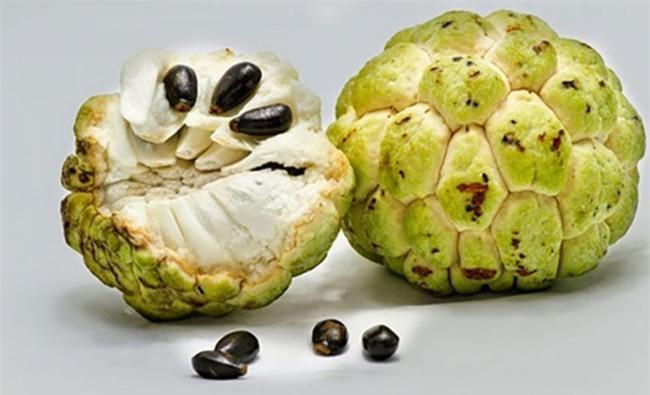 Có những loại trái cây dù rất ngon nhưng nếu ăn phải bộ phận này của nó sẽ cực kì nguy hại - Ảnh 4.