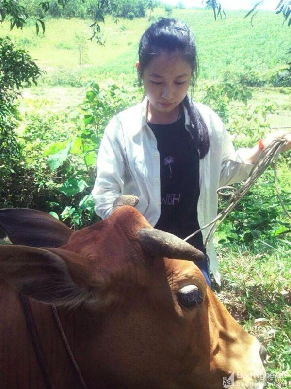 Chuyện cổ tích về nữ sinh nghèo chăn bò xứ Nghệ đạt 30 điểm khối C - Ảnh 2.