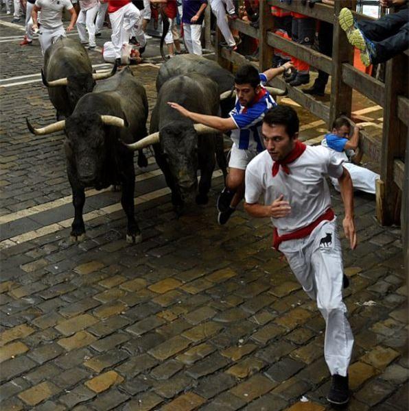 Tây Ban Nha: Hàng loạt du khách bị húc trọng thương trong lễ hội bò tót - Ảnh 6.