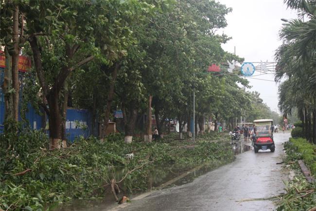Hình ảnh tan hoang sau cơn bão số 2 ở miền Trung - Ảnh 1.