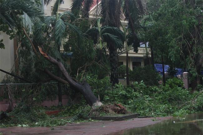 Hình ảnh tan hoang sau cơn bão số 2 ở miền Trung - Ảnh 3.