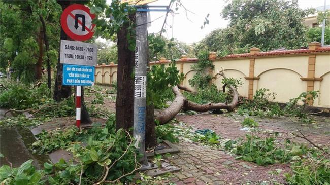 Hình ảnh tan hoang sau cơn bão số 2 ở miền Trung - Ảnh 5.