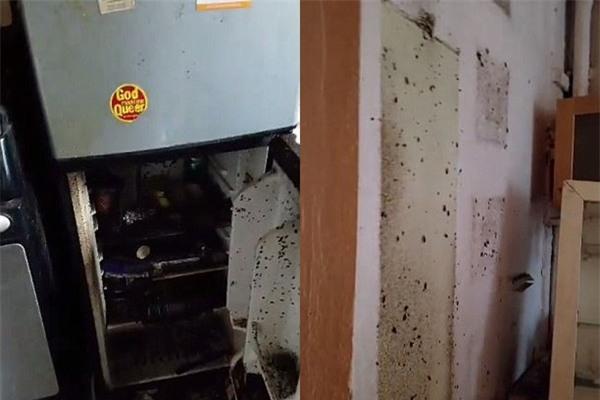 Quản lý tòa nhà tá hỏa khi thấy cảnh tượng ngổn ngang bên trong căn hộ của kẻ thuê nhà bẩn nhất Manhattan, Mỹ - Ảnh 5.