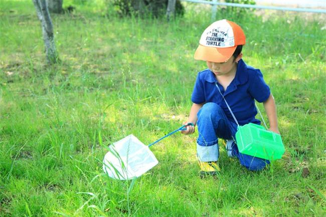 Thích thú với cách người Nhật dùng côn trùng làm giáo cụ dạy trẻ - Ảnh 1.