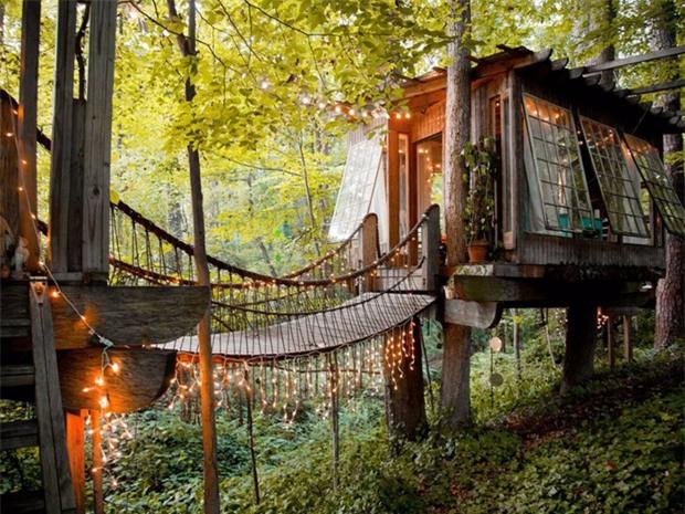 Bên trong ngôi nhà trên cây mộng mơ đang gây sốt trên Airbnb, hàng trăm nghìn người muốn được tới thăm một lần - Ảnh 1.