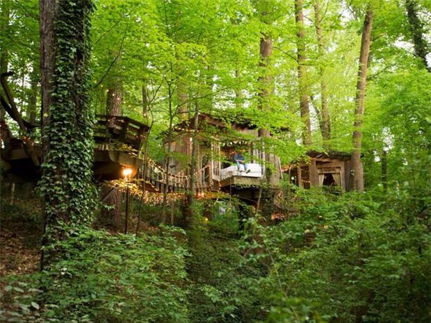 Bên trong ngôi nhà trên cây mộng mơ đang gây sốt trên Airbnb, hàng trăm nghìn người muốn được tới thăm một lần - Ảnh 23.