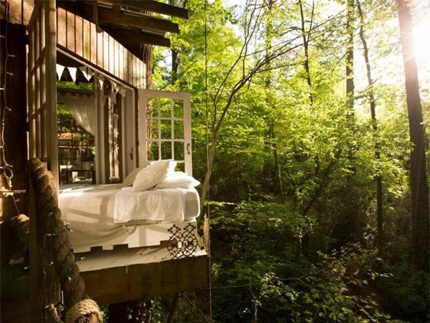 Bên trong ngôi nhà trên cây mộng mơ đang gây sốt trên Airbnb, hàng trăm nghìn người muốn được tới thăm một lần - Ảnh 7.