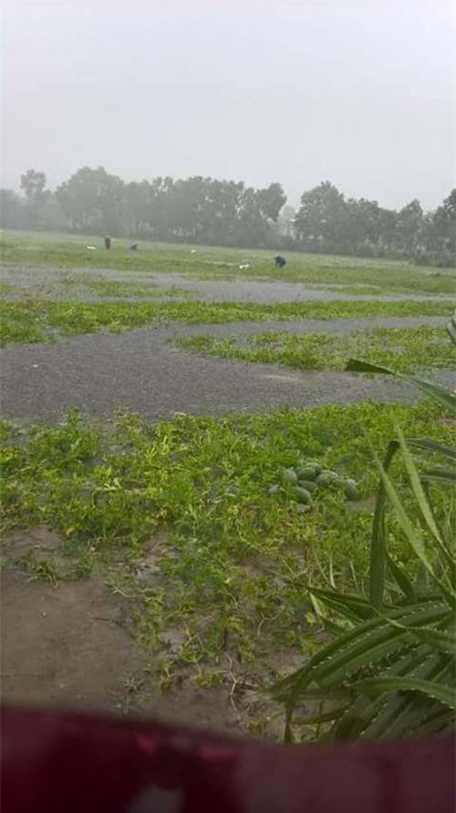 Clip: Người dân đổ xô ra đoạn đường ngập để bắt cá giữa tâm bão số 4 - Ảnh 3.