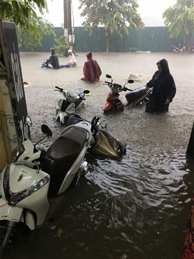 Clip: Người dân đổ xô ra đoạn đường ngập để bắt cá giữa tâm bão số 4 - Ảnh 11.