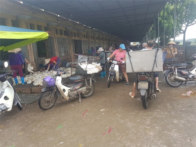 Cảnh buôn bán tấp nập ở khu D - Chợ gia cầm Hà Vĩ. Ảnh: PV