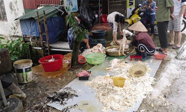 Những lò giết mổ gia cầm không phép nằm ven đường giao thông xã Lê Lợi, huyện Thường Tín (Hà Nội).