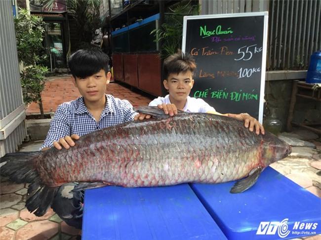 mực khổng lồ, chanh leo, cá trắm đen, thịt lợn, xoài, nấm, thực phẩm bẩn, lẩu, lẩu hóa chất