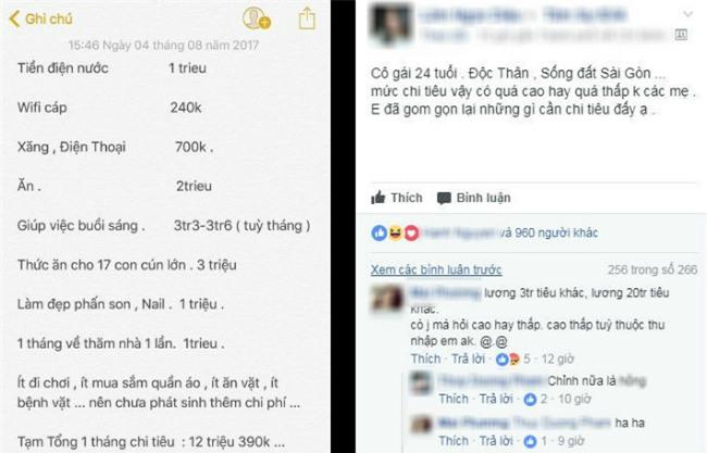 bang chi tieu gay tranh cai cua co gai doc than 24 tuoi: giup viec buoi sang het hon 3 trieu/thang - 1