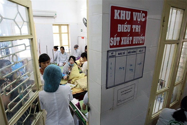 nu dieu duong mang thai sap de van cang minh chong sot xuat huyet - 10