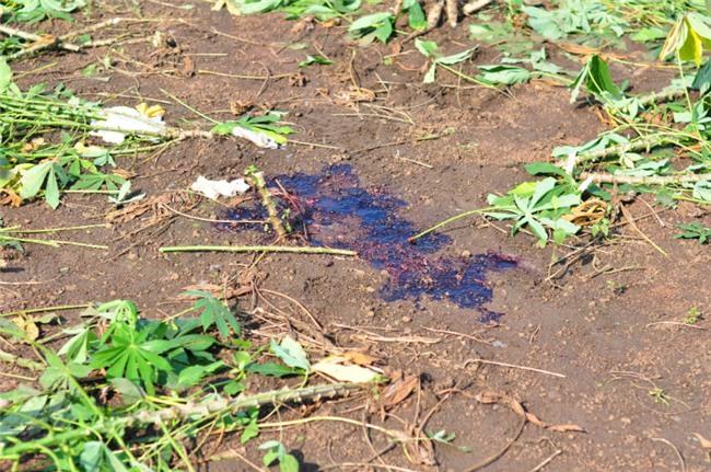 bắn chết nữ sinh, giết người, Đồng Nai