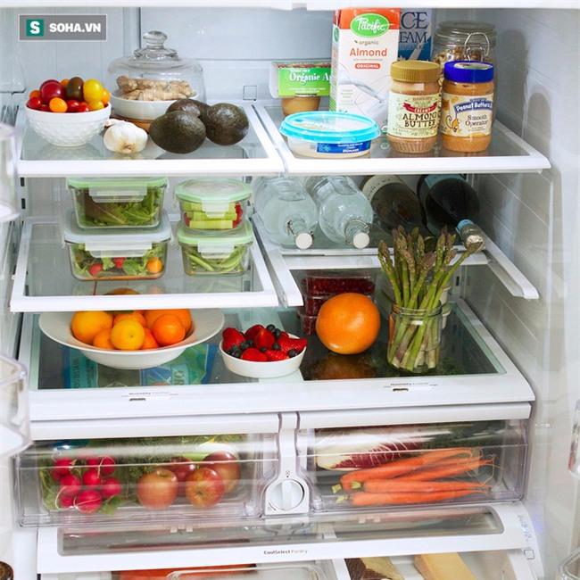 Nữ giáo sư Tiền Gia Minh: Sai lầm khiến cả nhà bị viêm dạ dày, đường ruột do tủ lạnh - Ảnh 1.
