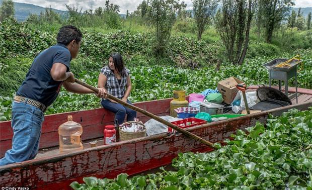 Cơn ác mộng Isla de las Munecas: Hòn đảo với hàng nghìn con búp bê kinh dị được treo lủng lẳng trên cây - Ảnh 3.