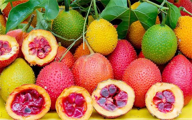 VN dùng quả này để nấu ăn sáng, vì sao thế giới ca tụng là trái cây đến từ thiên đường? - Ảnh 2.