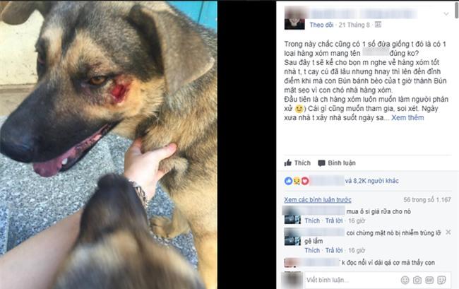 Từ câu chuyện tố hàng xóm xấu tính, thả chó dữ cắn chó nhà, cô gái được dân mạng chỉ cho 500 cách dạy dỗ - Ảnh 1.