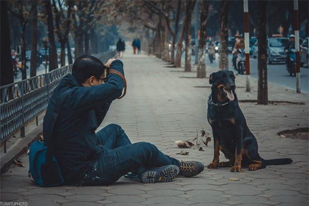 Xót xa cảnh cả đàn chó gắn bó với gia đình suốt 5 năm bị đánh bả chết tại Hà Nội - Ảnh 4.