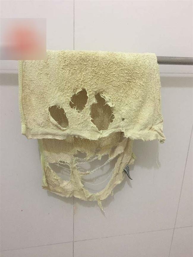 Dùng khăn tắm nát như xơ mướp, chồng không mua mới còn đem lên mạng khoe vì tôi thương vợ - Ảnh 2.