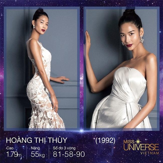 Bị chê không nên thi Hoa hậu Hoàn vũ, Hoàng Thùy đáp trả sâu cay - Ảnh 1.