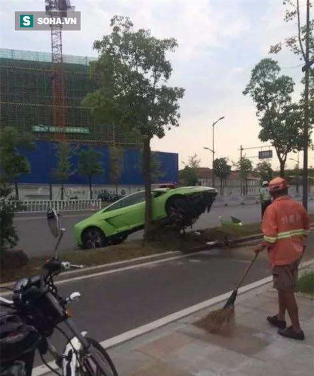 Điều tra xe sang đỗ trên thân cây, cảnh sát lần ra vô số tình tiết cười ra nước mắt! - Ảnh 1.