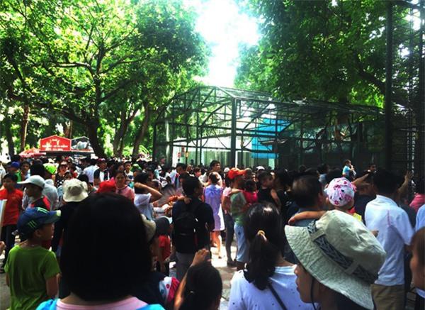 Hà Nội: Nhiều bậc cha mẹ trèo rào, trốn vé vào CV Thủ lệ ngày nghỉ lễ đầu tiên - Ảnh 11.