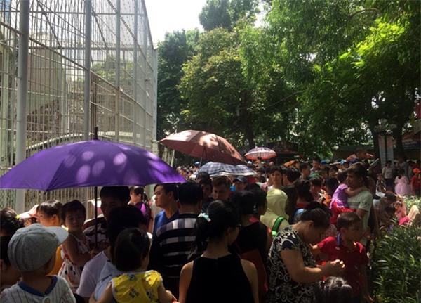 Hà Nội: Nhiều bậc cha mẹ trèo rào, trốn vé vào CV Thủ lệ ngày nghỉ lễ đầu tiên - Ảnh 9.