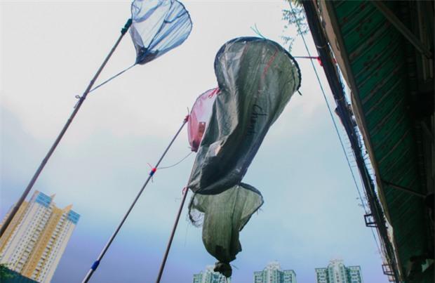 Vợt chế từ mùng, bao gạo và... thùng xốp - Đội quân giật cô hồn ở Sài Gòn ngày càng chuyên nghiệp - Ảnh 11.