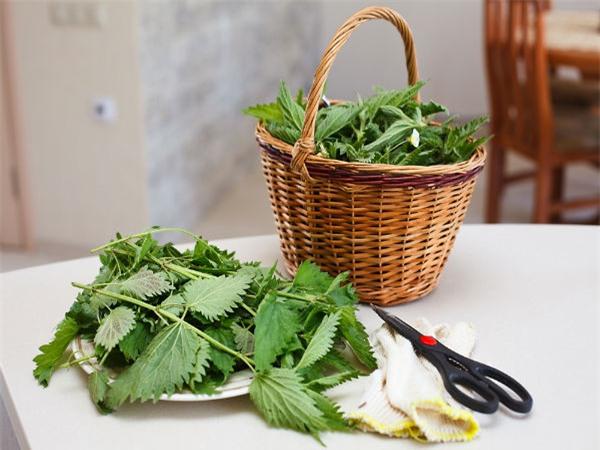 Gan là bộ phận thải độc rất quan trọng: Chịu khó ăn những loại thực phẩm này để bổ gan - Ảnh 3.