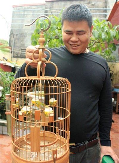 chim quý hiếm, chim cảnh, thú chơi, chơi chim