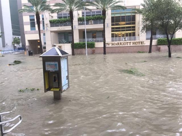 Khách sạn Marriott ngập trong nước tại Miami (Ảnh: NicoSan/Twitter)
