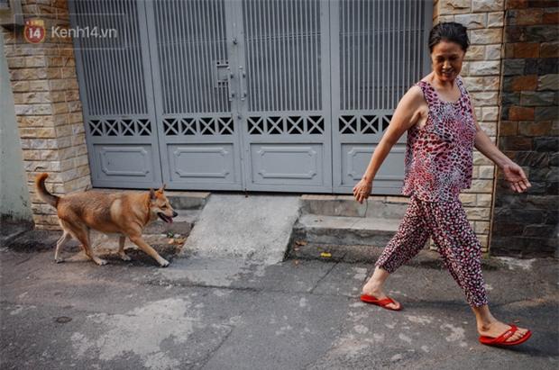 Gặp Gấu - chú chó cá tính nhất Sài Gòn: Chủ mua gì cũng xung phong xách hộ, không cho theo thì hờn mát bỏ ăn! - Ảnh 4.