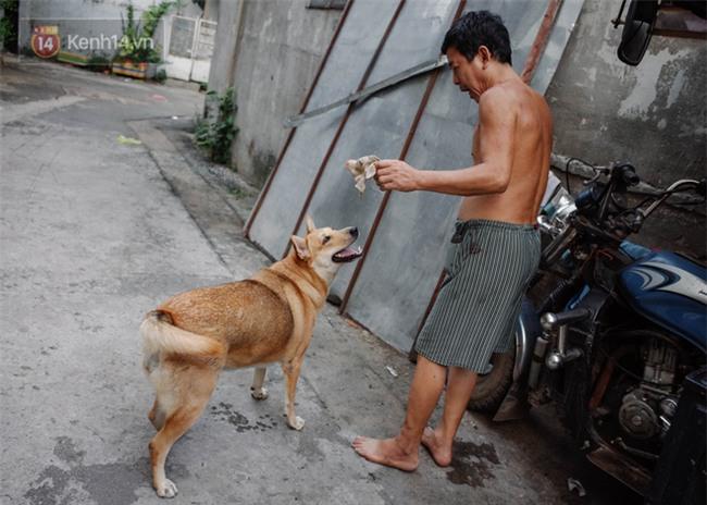 Gặp Gấu - chú chó cá tính nhất Sài Gòn: Chủ mua gì cũng xung phong xách hộ, không cho theo thì hờn mát bỏ ăn! - Ảnh 8.