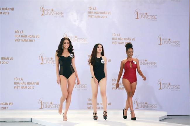 Sao Việt đua nhau mặc bikini nóng bỏng dự thi Hoa hậu Hoàn vũ Việt Nam - Ảnh 1.