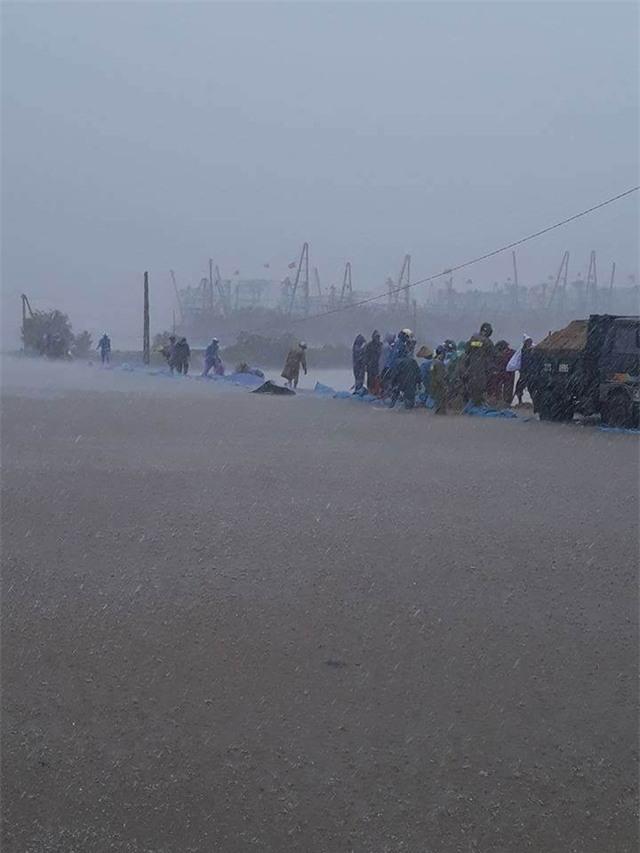 Đê sông Mai Giang (thị xã Hoàng Mai, Nghệ An) (Ảnh: Phạm Cảnh)